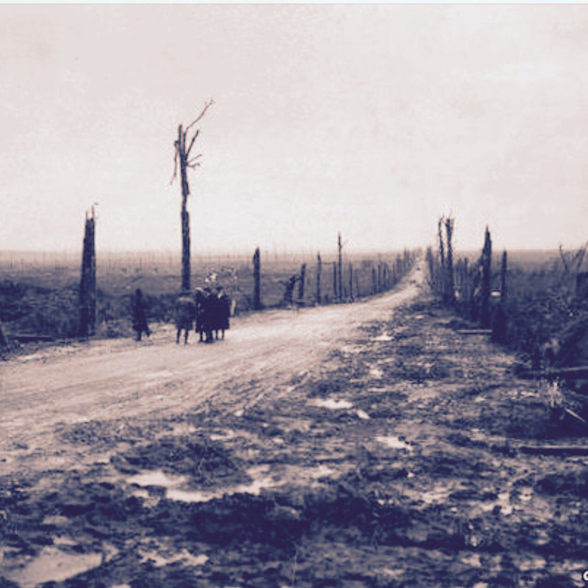The idea of racing along the length of the Western Front in France leaves landscapes feeling more like something out of Beckett than the usually invoked Dante and his Hell of the North.