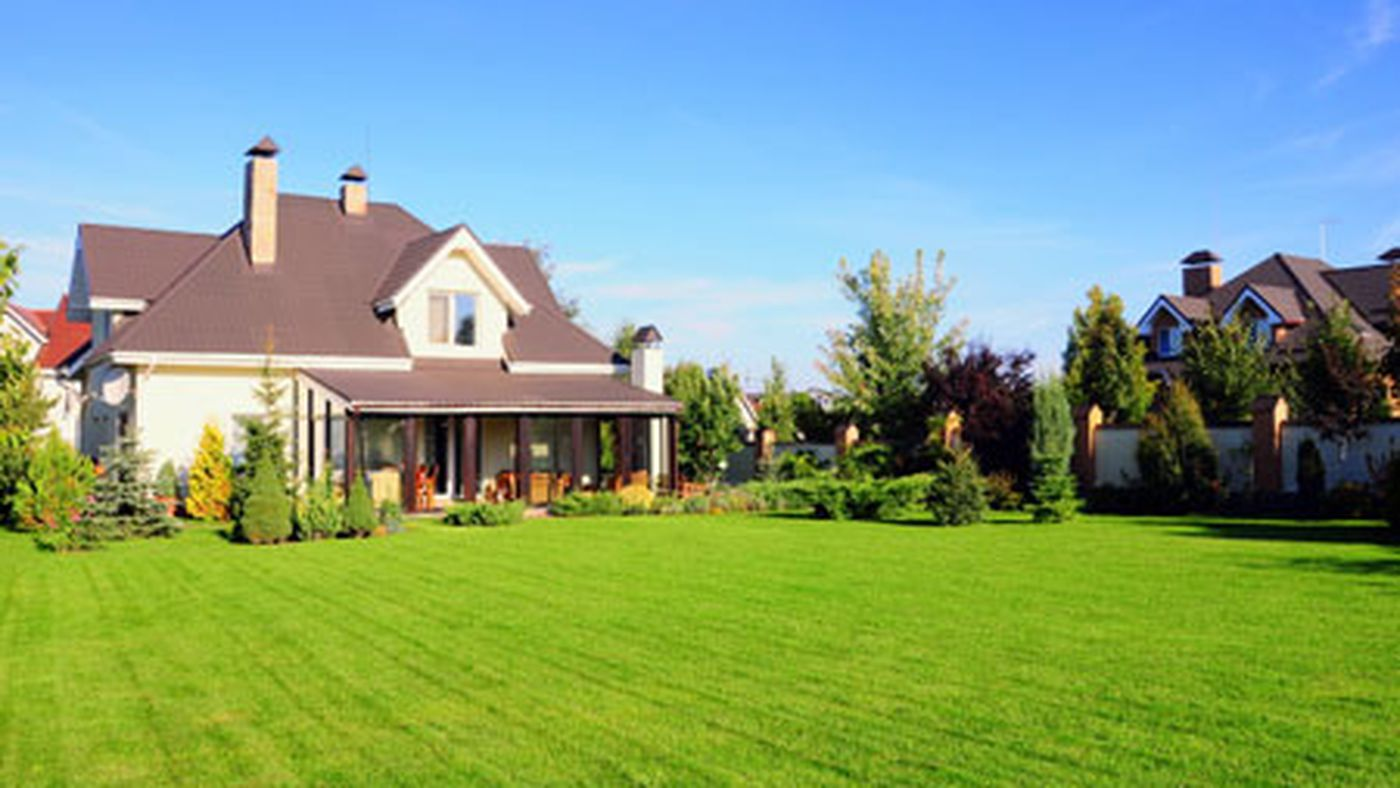Your Toughest Lawn Questions Answered This Old House