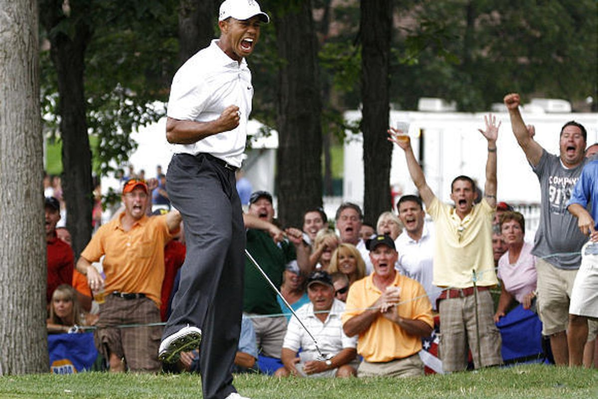 Tiger Woods reacts after making a birdie putt on the 17th hole during the 3rd round of the Buick Open.