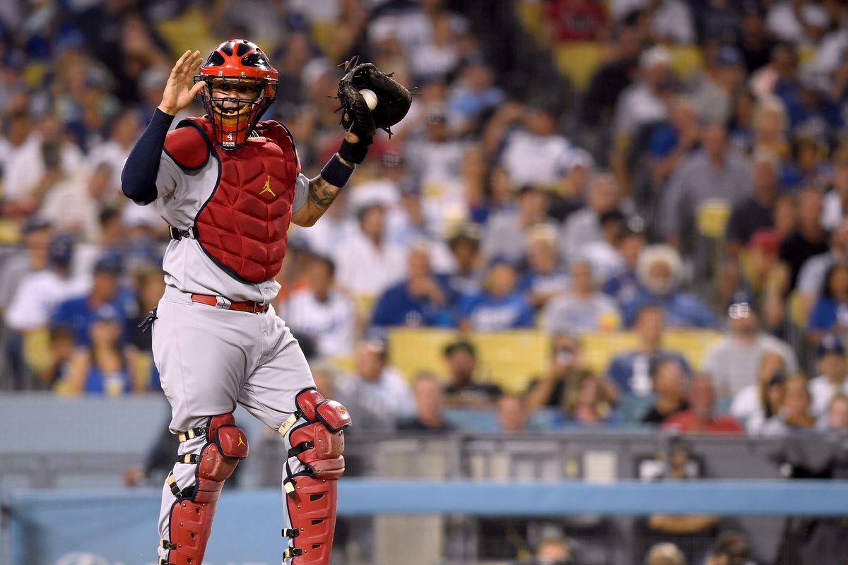 1c49f7f0d St. Louis Cardinals catcher Yadier Molina won his ninth Gold Glove Award.  Photo by Harry How Getty Images