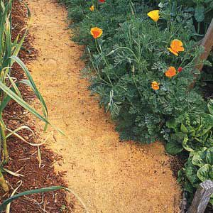 <p>A MULCH PATH, including bark, pine needles or the fresh sawdust shown here, is best for an informal path in low-traffic spots</p>