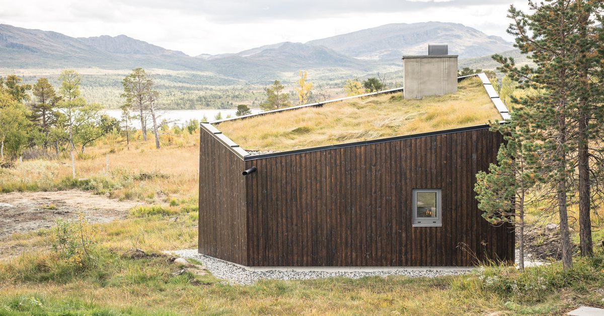 Green Roofed Modern Hut Is Perfect For Hiding Away Curbed