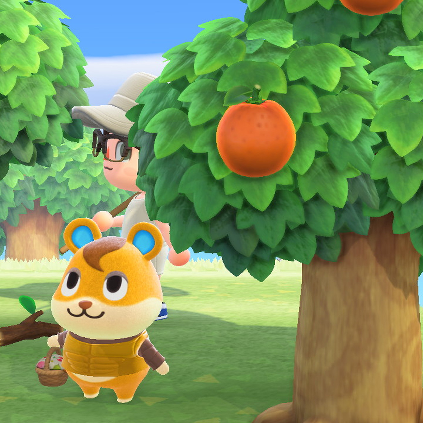 I Regret Giving My Animal Crossing New Horizons Villager A Muscle