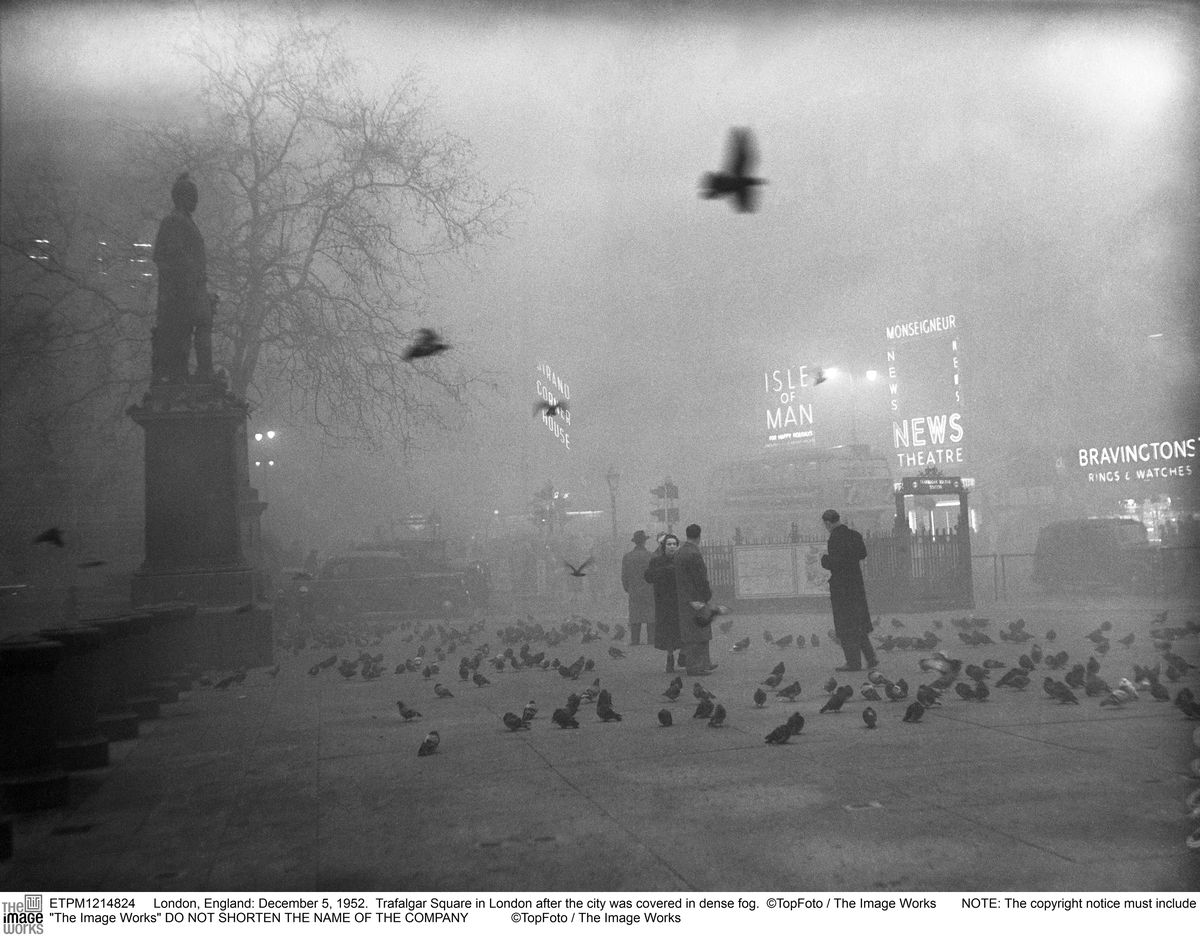 In 1952 London, 12,000 people died from smog — here's why