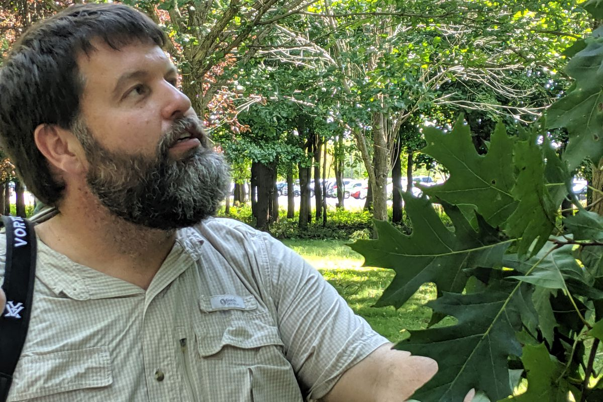 In teaching tree identification, extension forester Chris Evans acted like a detective and taught students to…