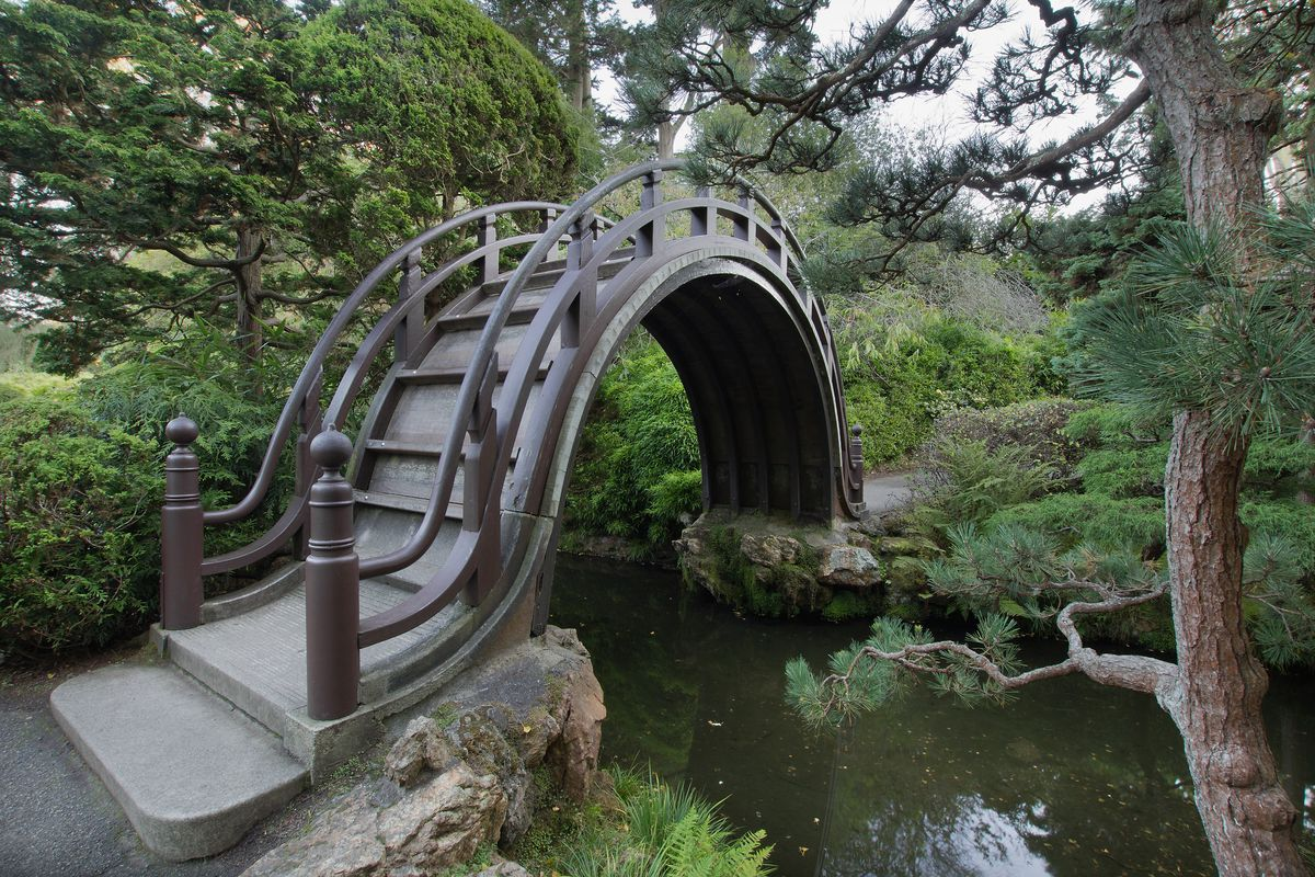A curved wooden bridge in a lush and green park.