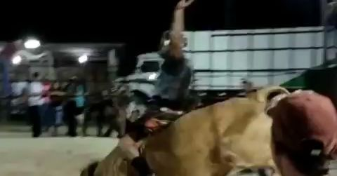 Video: Charles Oliveira has 'dream come true' as he rides a bull in Brazil