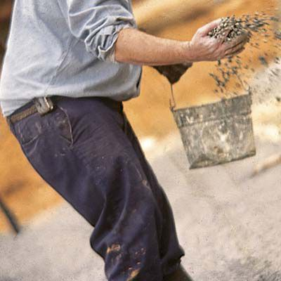 Man Scatters Aggregate Mix Of Cement For Terrazzo Floor