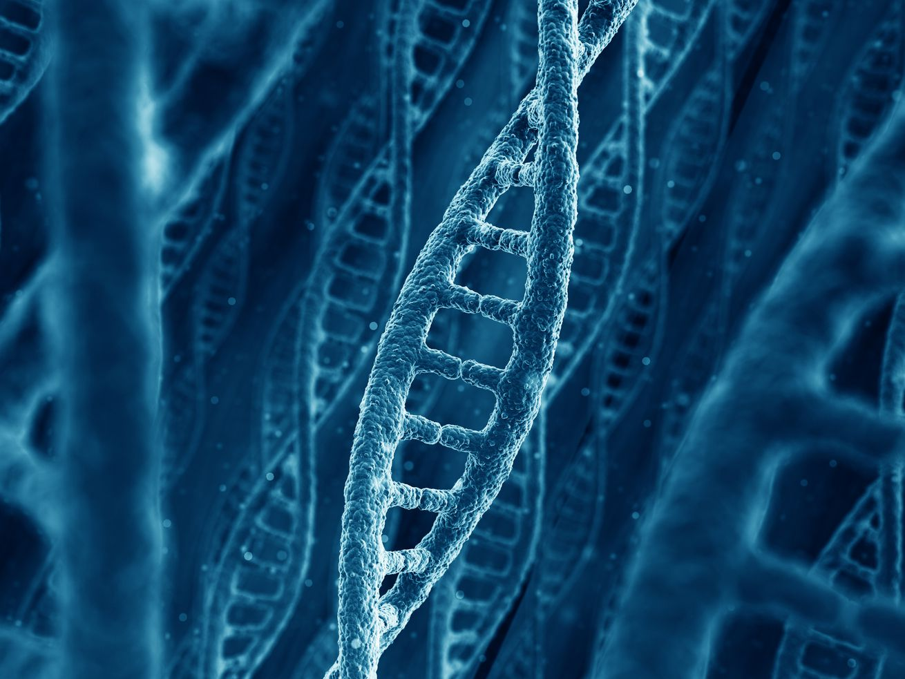 A DNA helix.