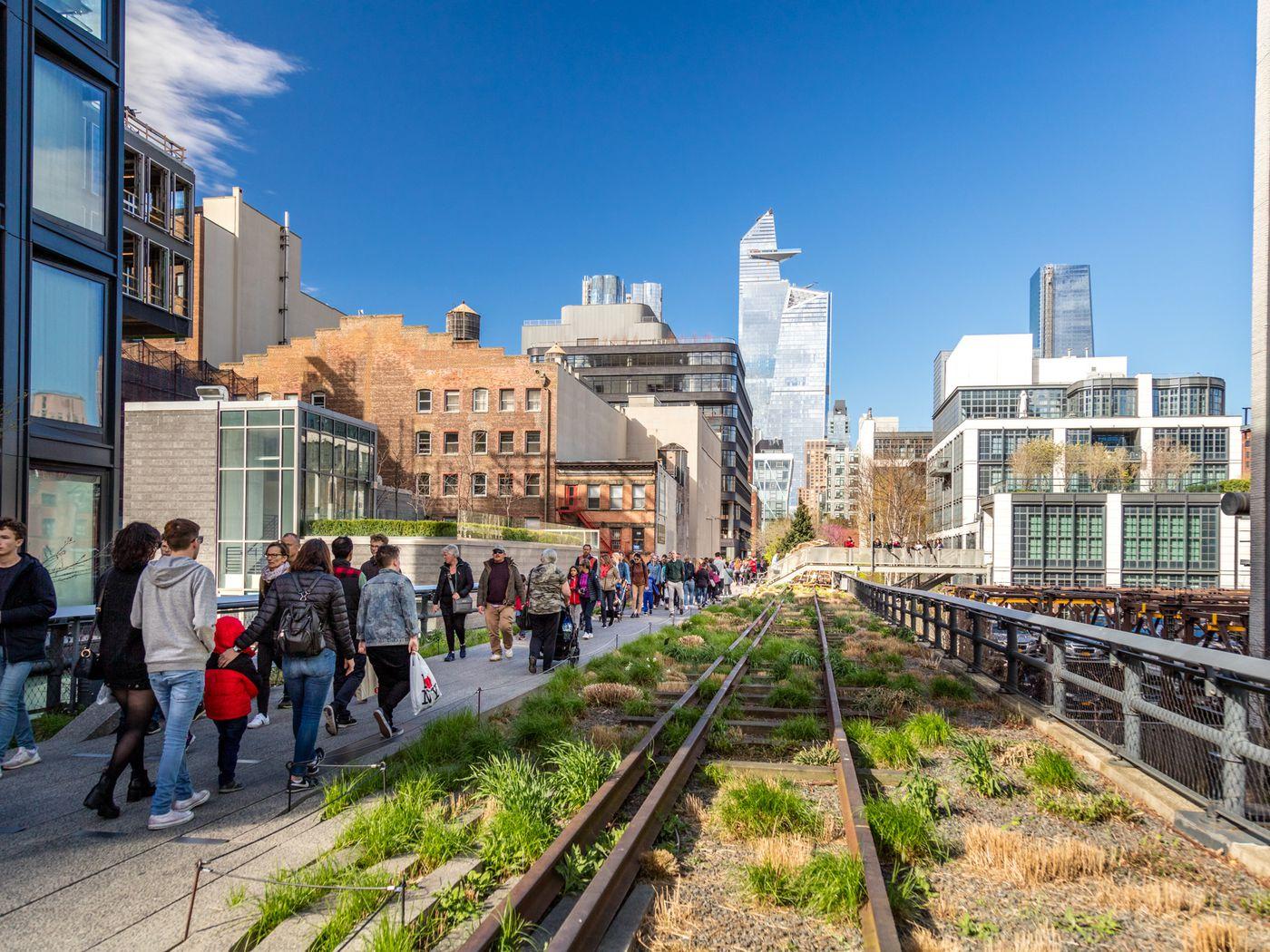 Hy Line New York