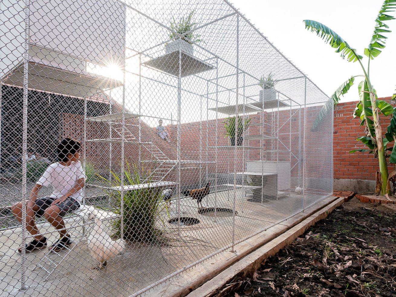 Fancy chicken coop pulls double duty as a jungle gym