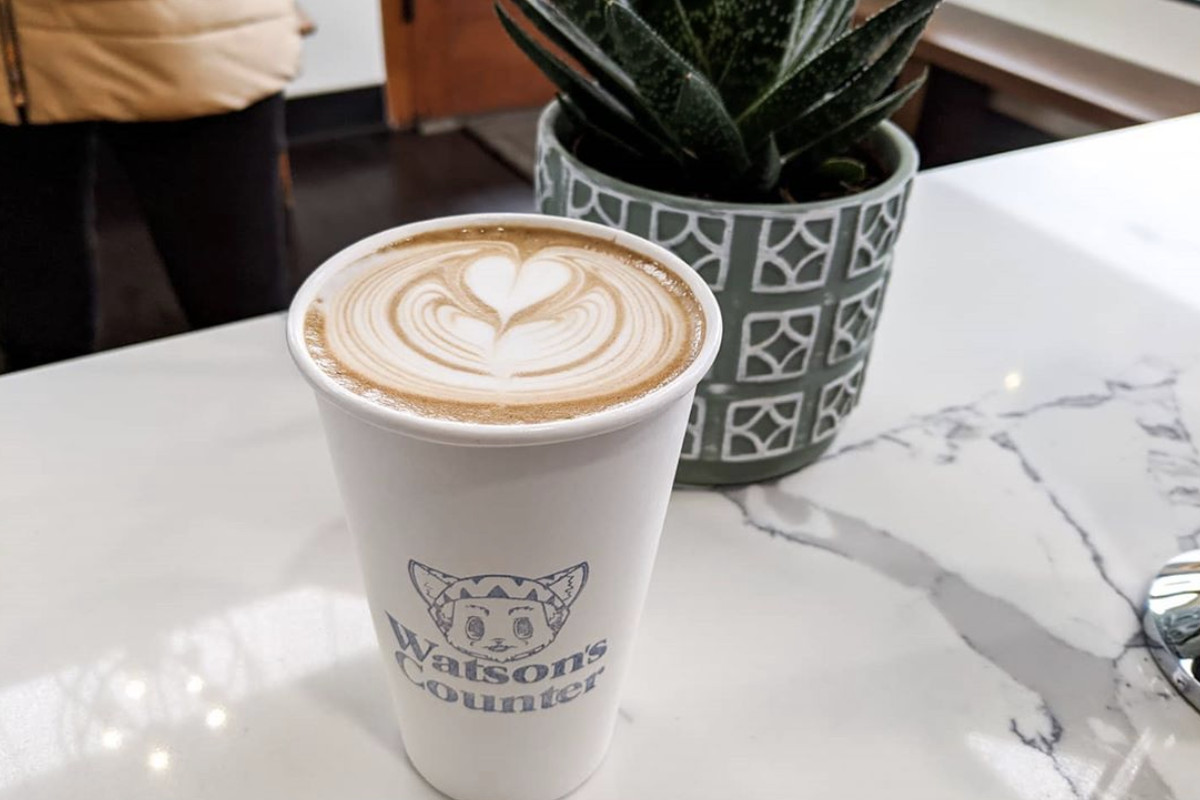 A latte in a paper cup on a counter, with a Watson's Counter logo and a green plant in the background