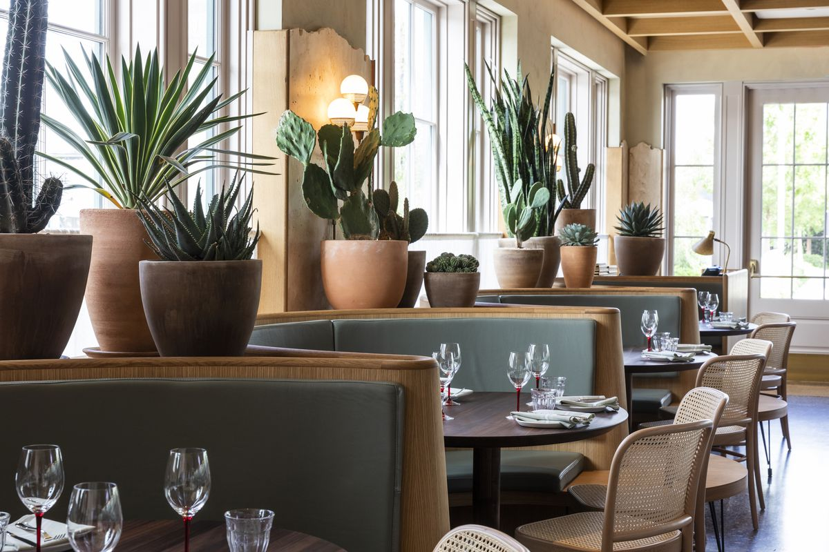 Half-circle banquettes at Rosie Cannonball, with cactus and succulents in terra cotta pots above