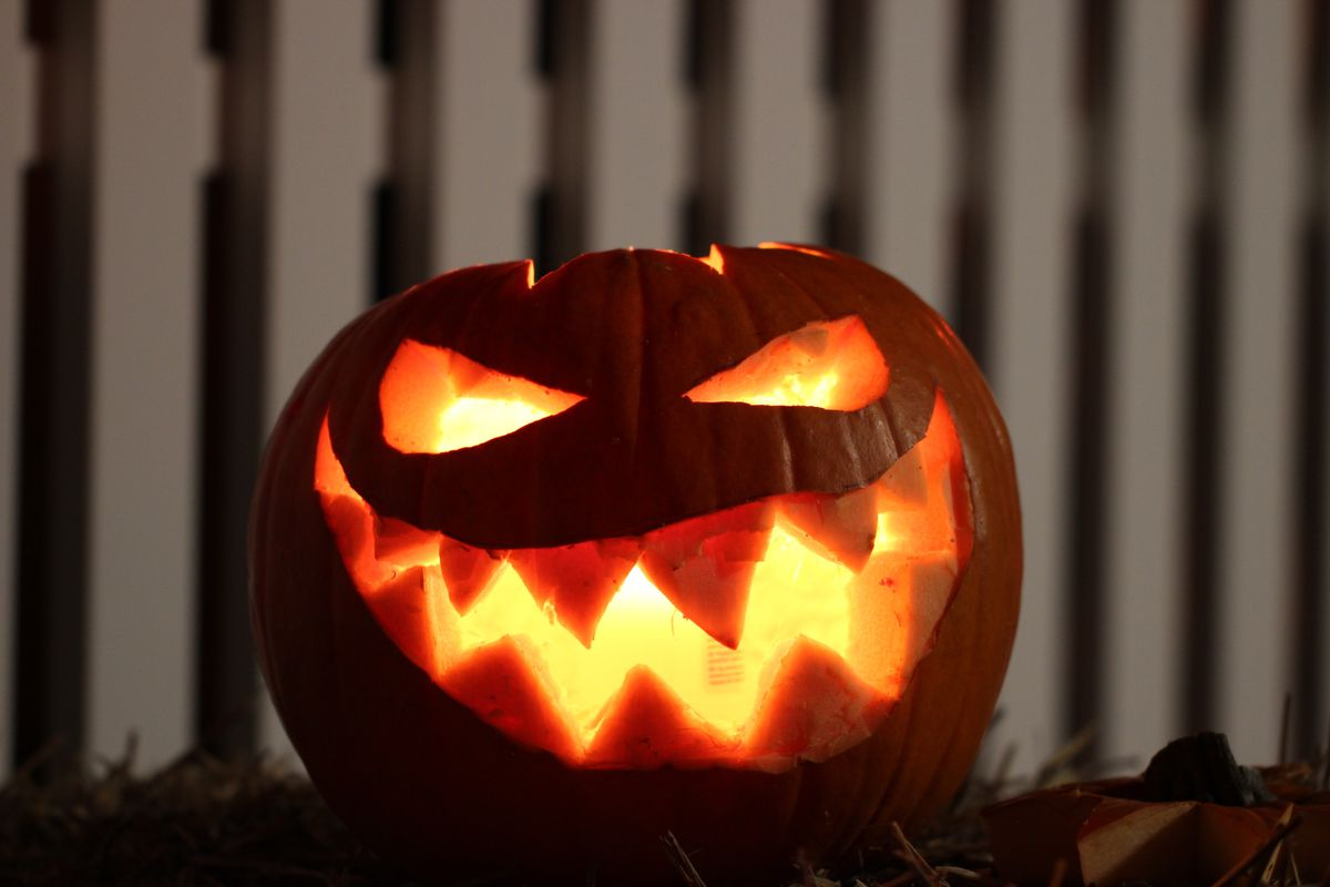 beware of pumpkin lacerations this halloween government warns the