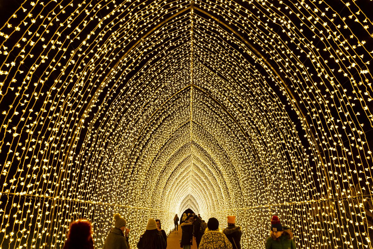 """The """"Cathedral of Light"""" at the Chicago Botanic Garden's Lightscape nighttime light show."""