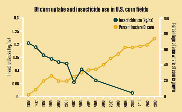 BT corn and insecticides