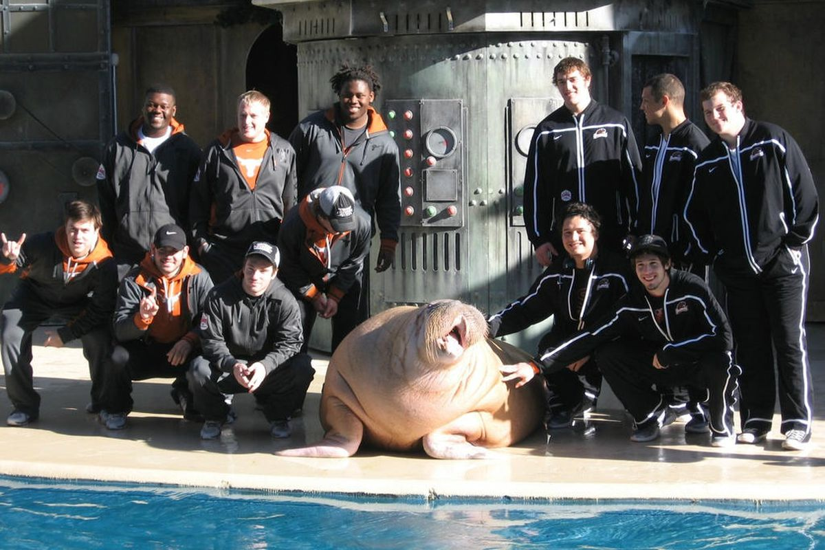 Oregon St. will need to replace graduating DTs Castro Masaniai and Andrew Seumalo after the Alamo Bowl, and today, the Beavers appear to be going head to head with a contingent of Longhorns in courting a prospect currently working at Sea World.