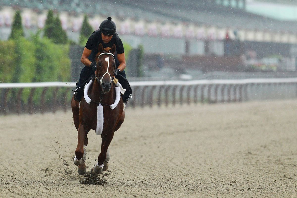 ELMONT, NY - MAY 25:  Kentucky Derby, and Preakness winner I'll Have Another is ridden by exercise trainer Humberto Gomez at Belmont Park on May 21, 2012 in Elmont, New York.  (Photo by Al Bello/Getty Images)