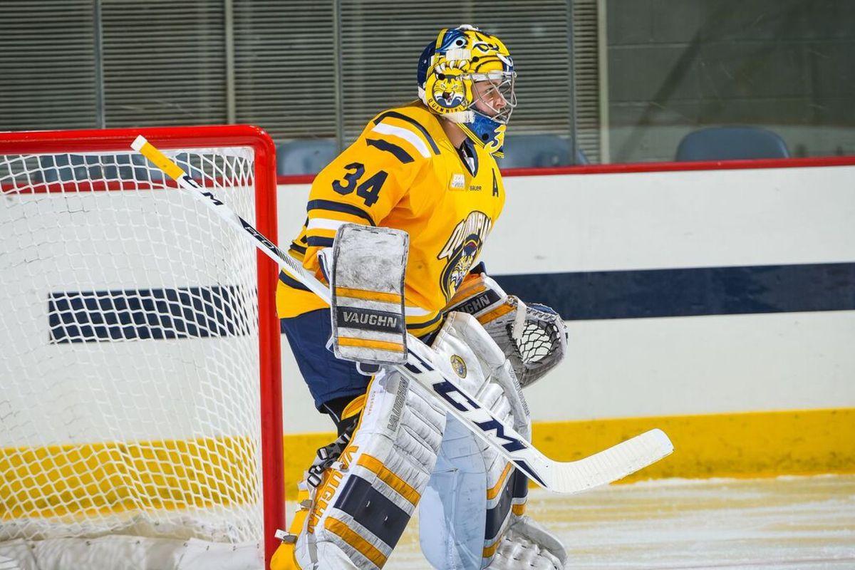 women u0027s college hockey goalie breakdown the ice garden