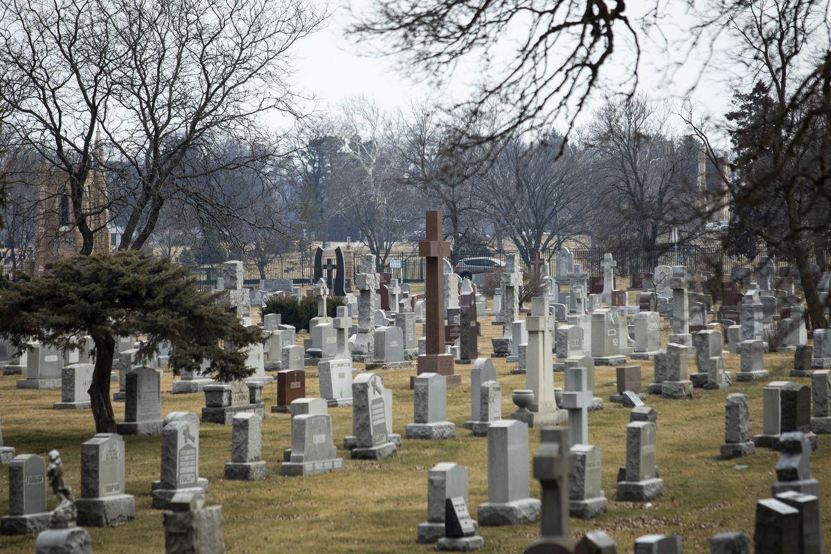 Mount Carmel Catholic Cemetery in Hillside | Ashlee Rezin/Sun-Times