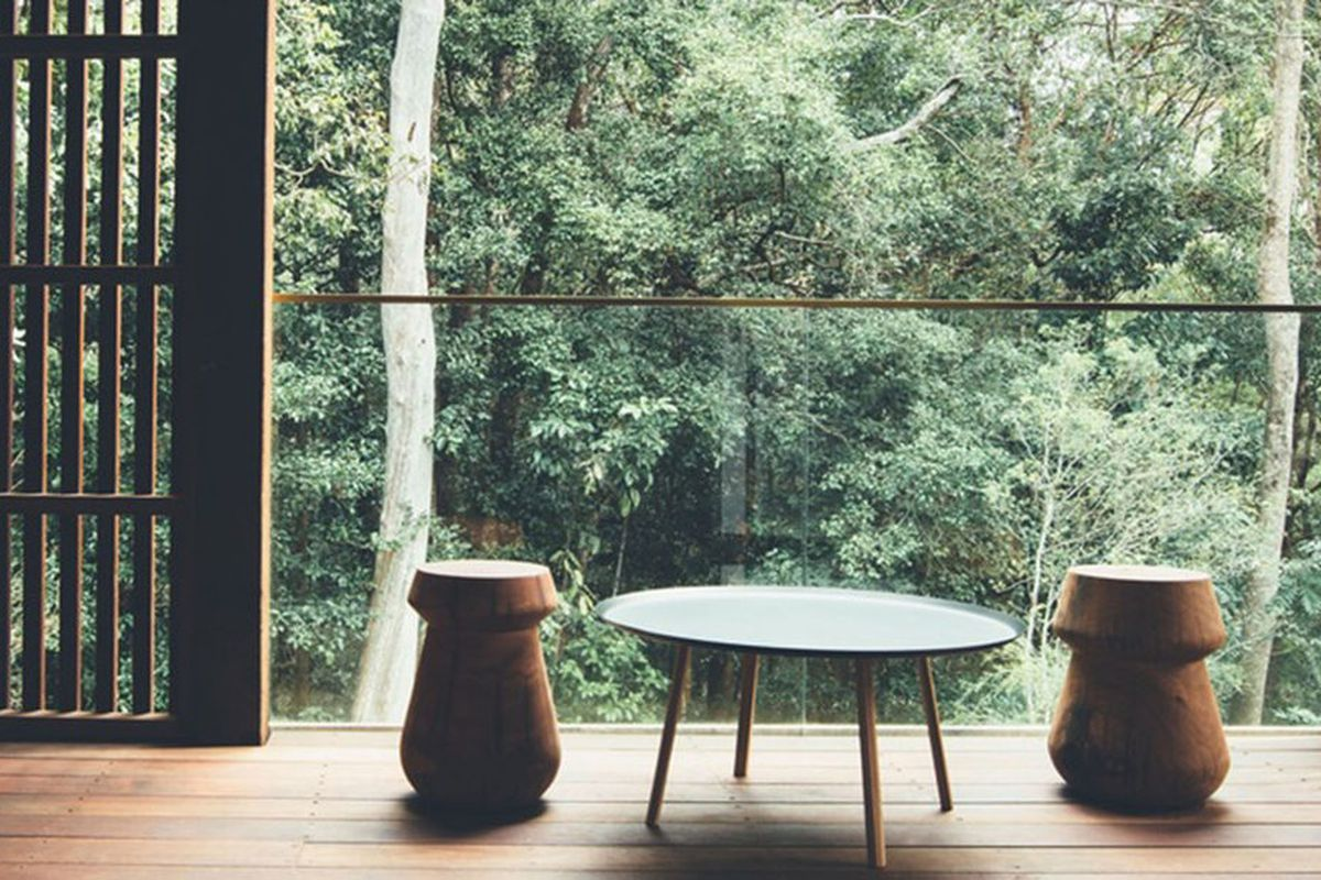 wooden beach house looks out to rainforest