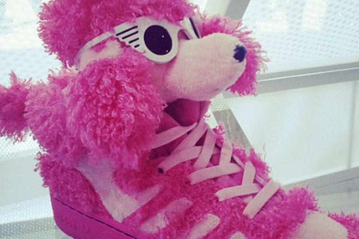 """Image via <a href=""""http://www.nitrolicious.com/blog/2012/07/04/jeremy-scott-x-adidas-originals-pink-poodle-sneakers/"""">Nitrolicious</a>"""