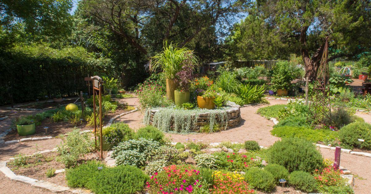 Austin S 15 Best Gardening Stores Curbed Austin
