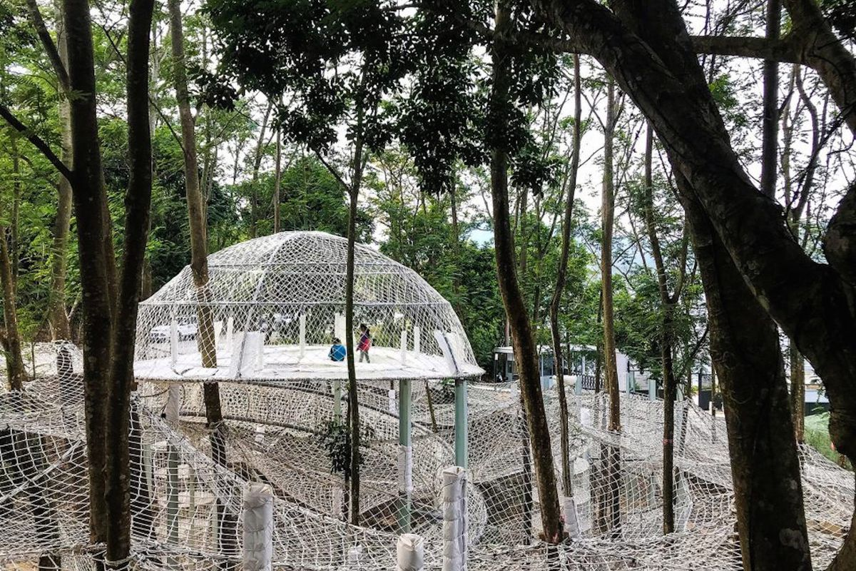 White nets suspended in trees