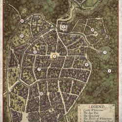 A sample of an overworld map used in the campaign.