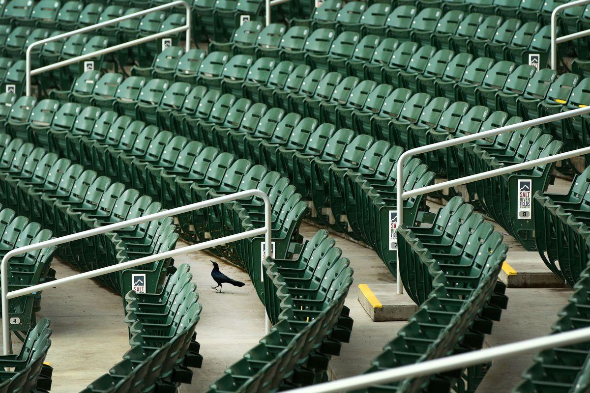 MLB: Spring Training-Milwaukee Brewers at Arizona Diamondbacks