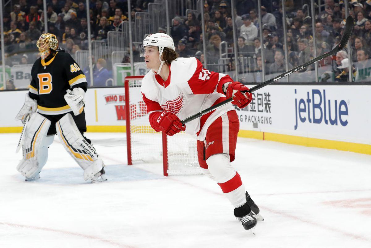 NHL: FEB 15 Red Wings at Bruins
