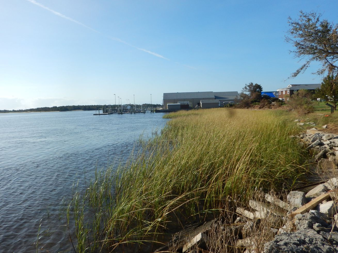 The living shoreline of cordgrass and oyster reef was built by NOAA to protect Pivers Island in Beaumont, North Carolina.