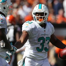 Sep 8, 2013; Cleveland, OH, USA; Miami Dolphins running back Daniel Thomas (33) celebrates with fullback Charles Clay (42) after scoring a touchdown against the Cleveland Browns during the fourth quarter at FirstEnergy Field. The Dolphins won 23-10.