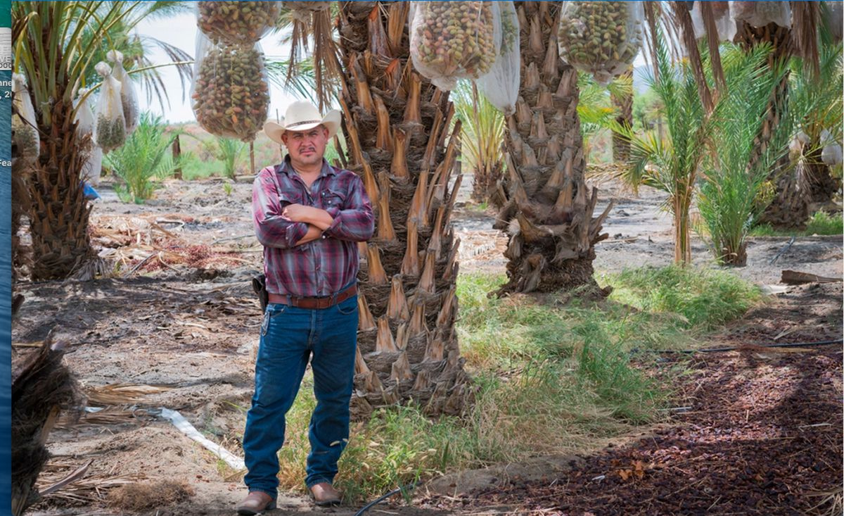 Aguileo Rangel Rojas, originally from Guanajuato, Mexico, has been working as a farm worker in Coachella since 2004.