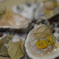Half shell oysters with cane vinegar, pickled lunchbox peppers, and coriander granita with sea salt