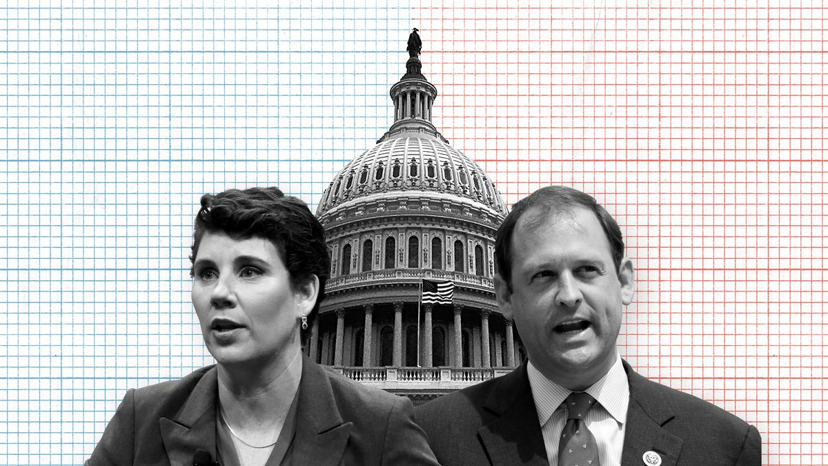 2018 midterm elections: the 16 most interesting House races - Vox