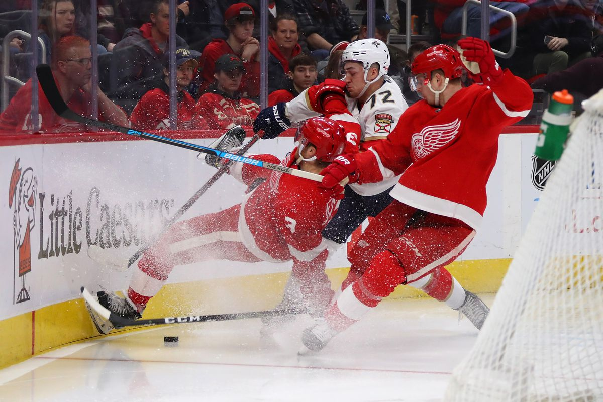 Florida Panthers v Detroit Red Wings