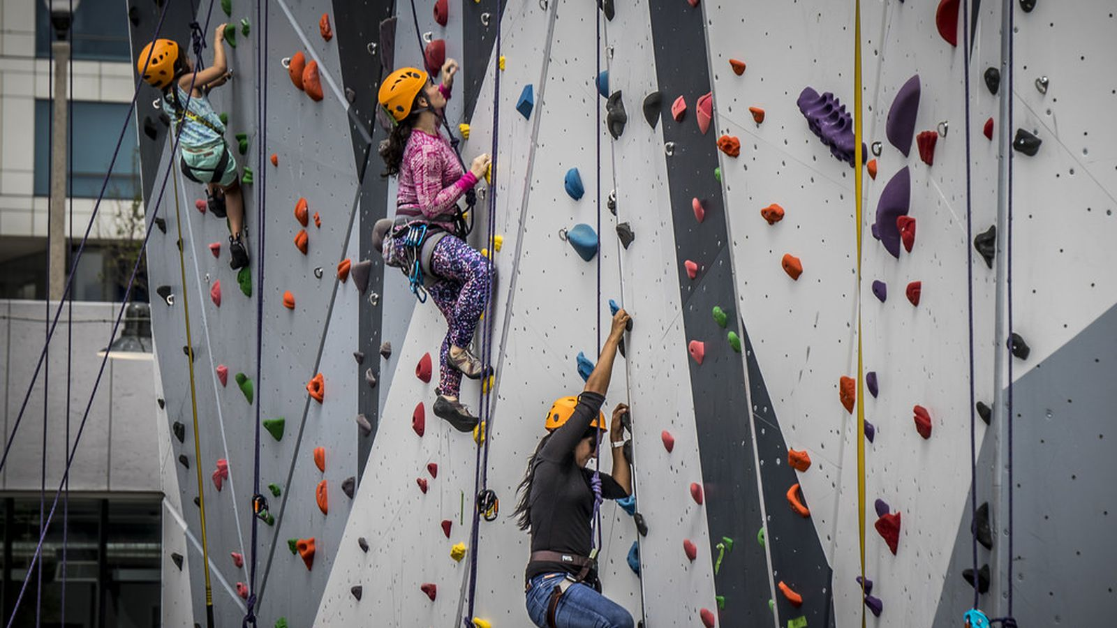 Navy Pier to Add New Outdoor Climbing Wall - Curbed Chicago