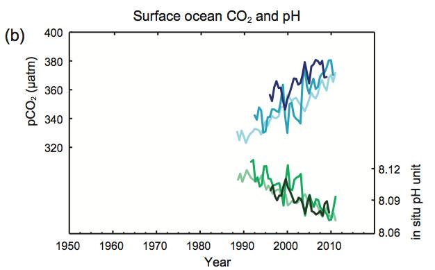 IPCC -- Ocean acidification