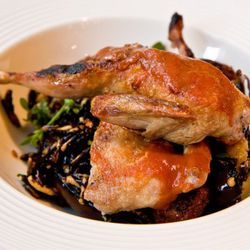 """Quail from Vandaag by <a href=""""http://www.flickr.com/photos/37601286@N06/6284289670/in/pool-eater/"""">gsz</a>."""