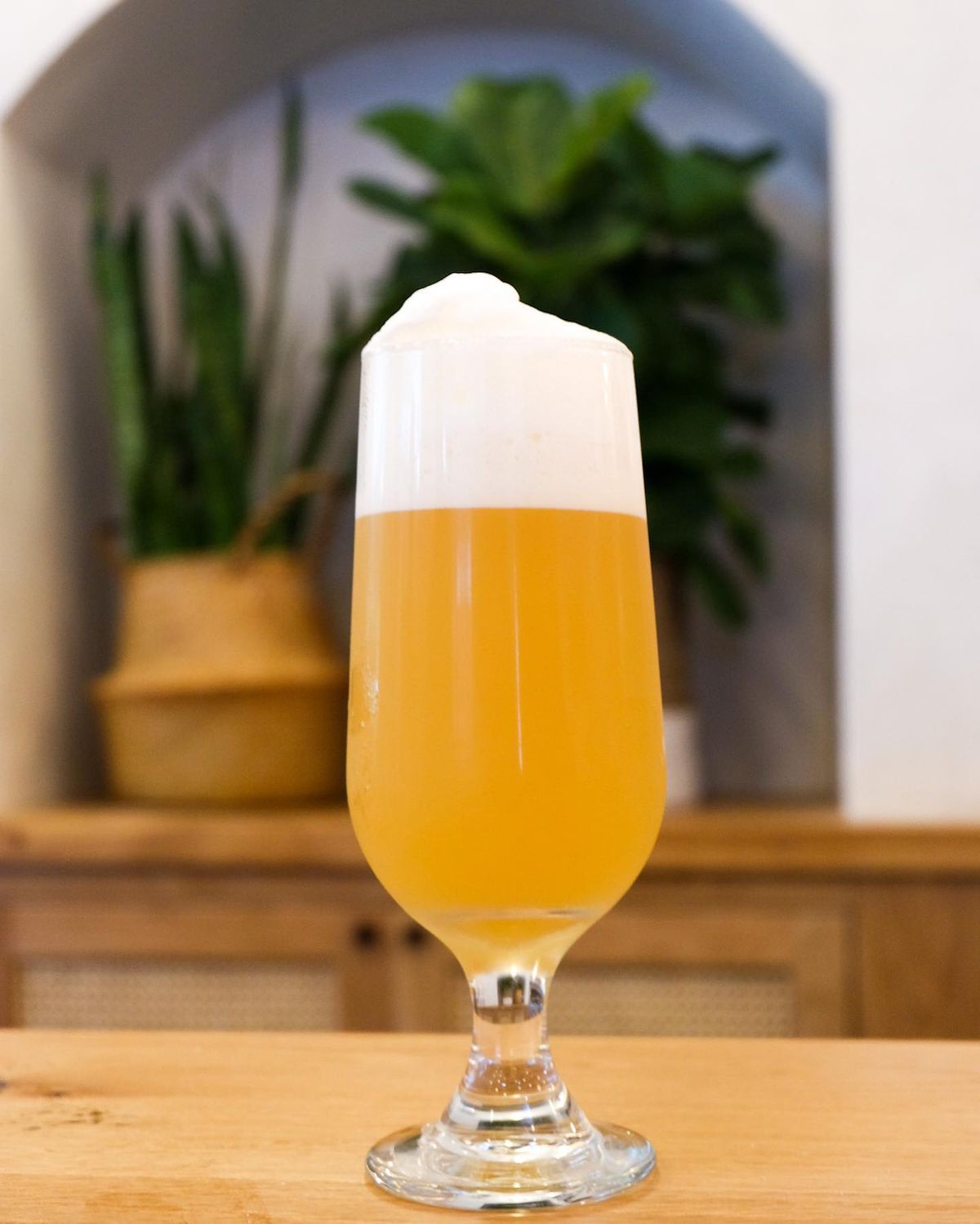 A tall stemmed glass of Galaxy Corkscrew double IPA with a frothy head