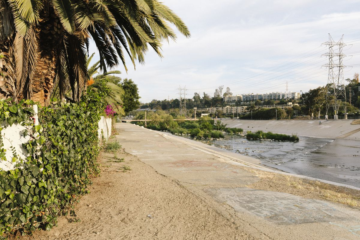 A concrete path by the LA River. The river is on the right, with lots of trees and vegetation on the left.