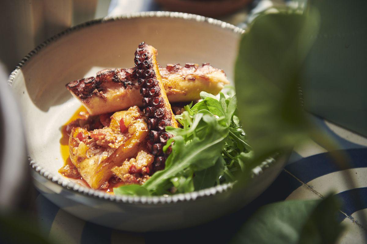 Pheasant's roasted octopus