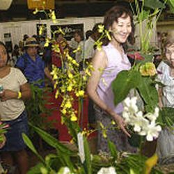 Sandy Abe of Japan, center, and her mom, Doris Abe, right, of Honolulu, shop for plants at the O'ahu Nursery Growers Association's booth at this year's festival. Some 37,000 attended this year's three-day event.