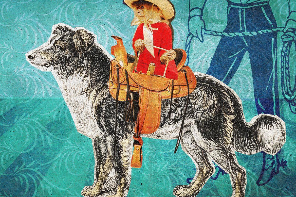 Ringer illustration