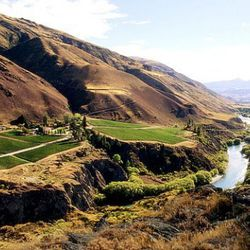 "Central Otago, New Zealand. [Source: a href=""http://www.chardfarm.co.nz/>Chard Farm"