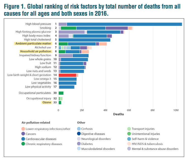 Global ranking of risk factors of death.