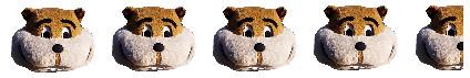 Goldy Head - 4.5