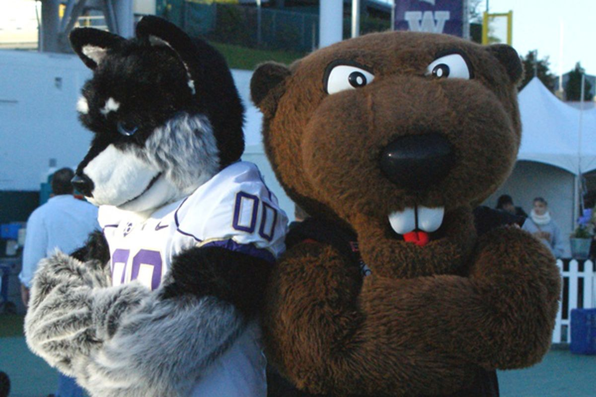 Harry Husky and Benny Beaver, and about 60,000 of their collective closet friends, will renew their old rivalry Saturday night in Seattle. How will it play out this time?