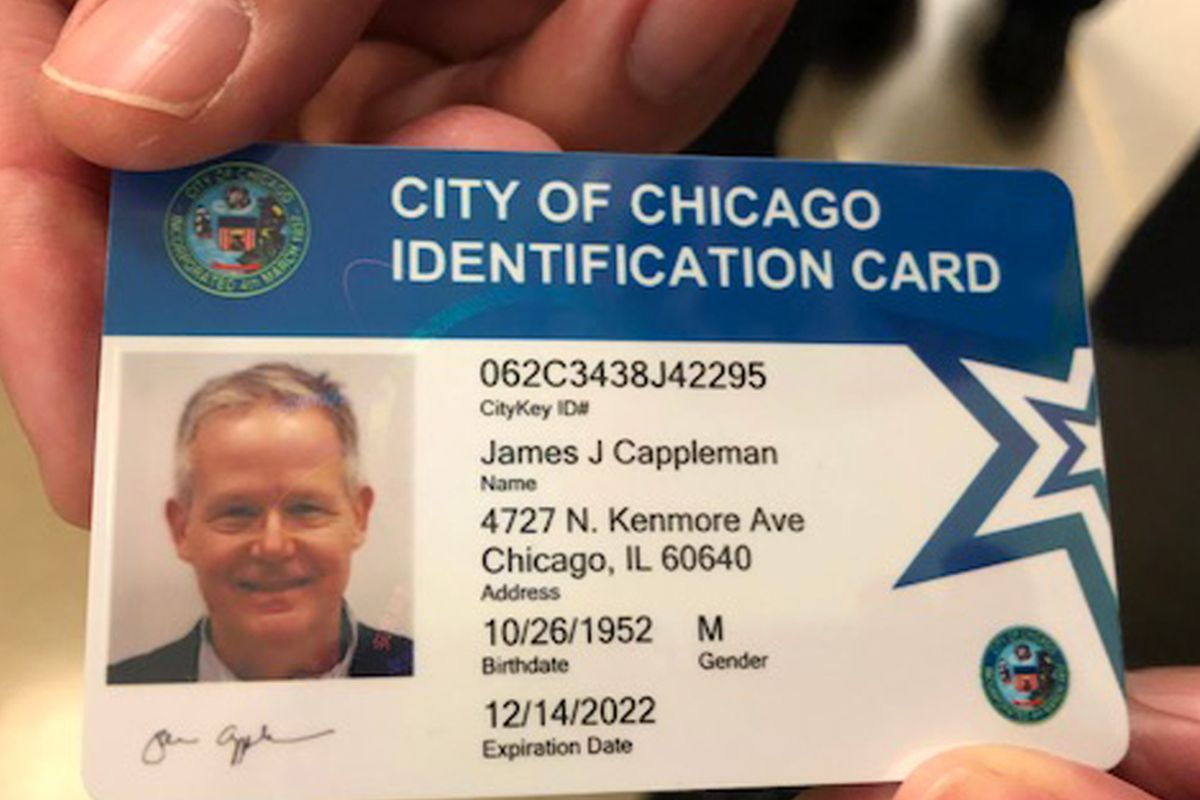illinois drivers licence cost
